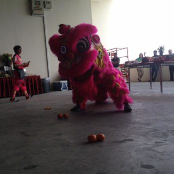 led lion dance performance and led dragon dance performance